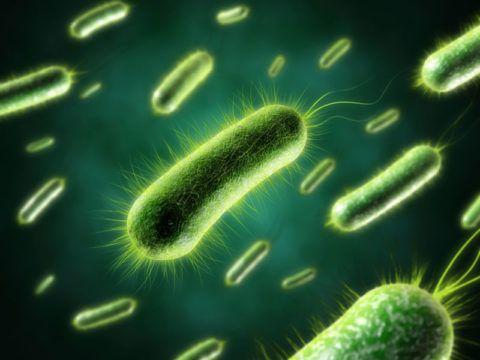 Бактериальная инфекция вызывает повышение температуры и скачки АД.