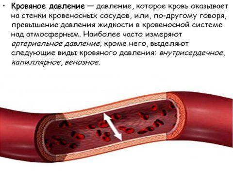 Характеристики кровяного давления.