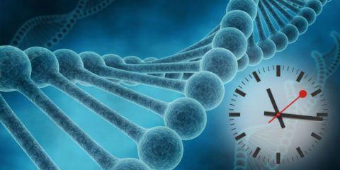 Нарушение работы генов
