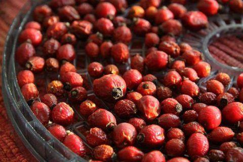 От повышенного пульса, народные средства, ягоды, корневища и травы используют в сухом или свежем виде. Замороженные продукты теряют много компонентов, которые способствуют восстановлению пульса.