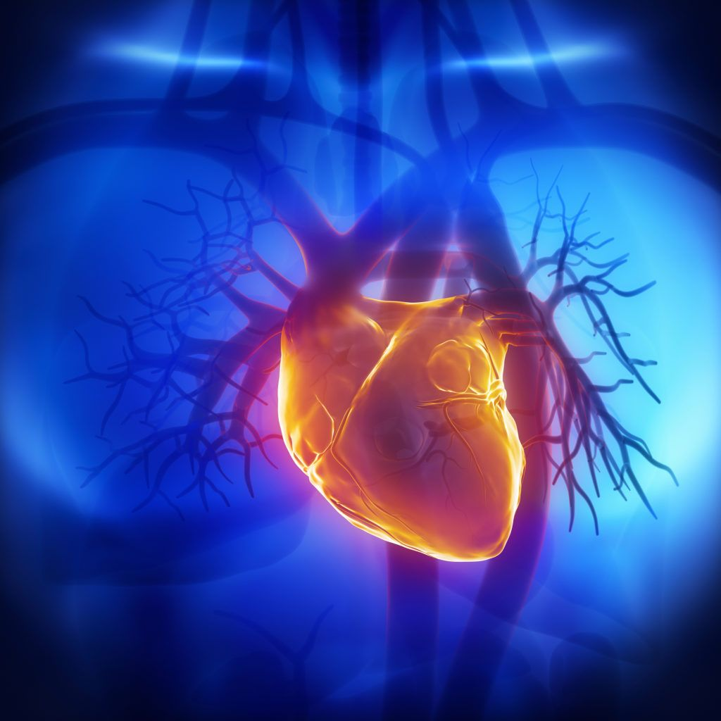 При перикардите воспалению подвергается наружная сердечная оболочка