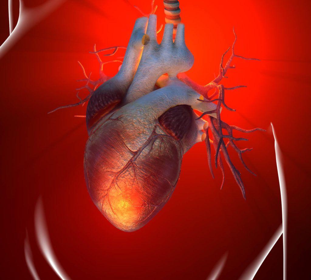 Кардиосклероз — это замещение функционально активного миокарда соединительной тканью