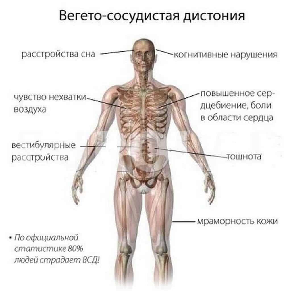 Заболевание проявляется множеством симптомов