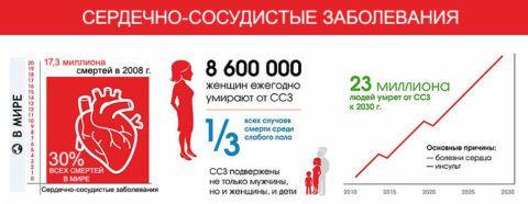Данные на графике о смертности людей от сердечнососудистых заболеваний