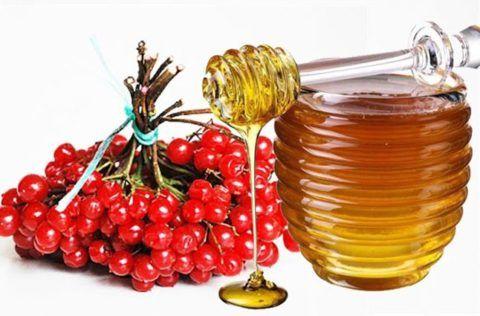 Для укрепления сердечной мышцы и нормализации АД совместно используется мед и калина.