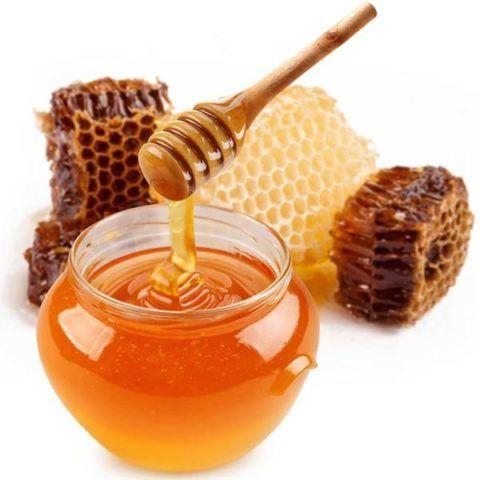 Мёд – успокаивающий продукт