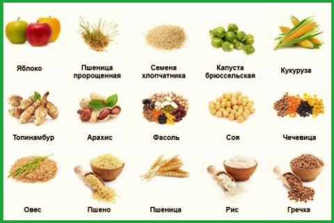 При составлении меню отдавайте предпочтение продуктам, богатым гемицеллюлозой