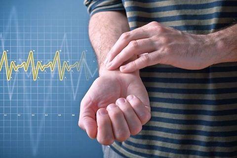 Пульс – показатель состояния сердца и организма в целом