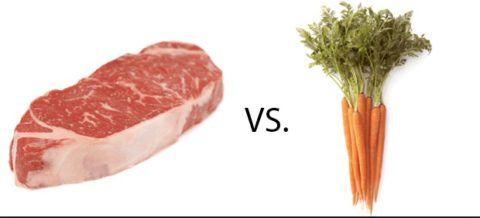 В рационе питания необходима, как растительная, так и животная пища.