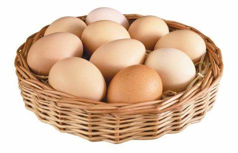 Яйца – источник белка для организма.
