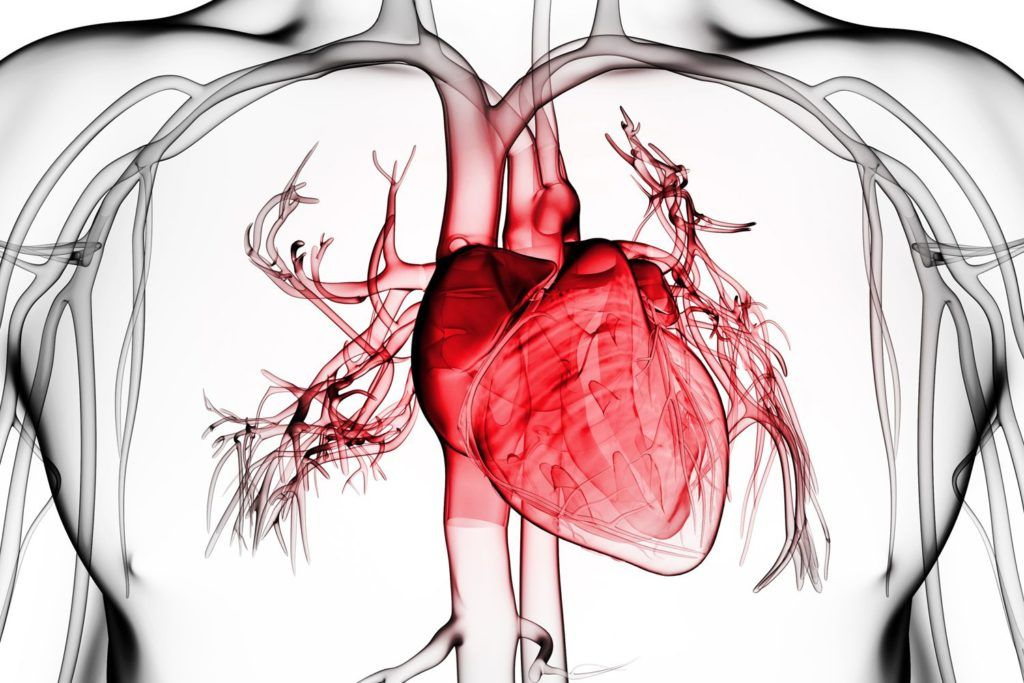 Воспаление или травма вызывают нарушение продукции и всасывания перикардиальной смазки