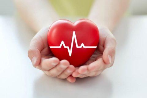 Чем дольше значение АД в норме, тем сильнее сердце
