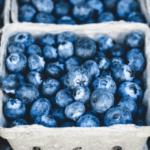 Черника не только вкусная, но и полезная ягода