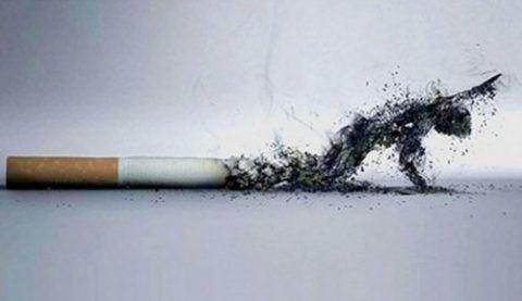 Курение сокращает длительность жизни