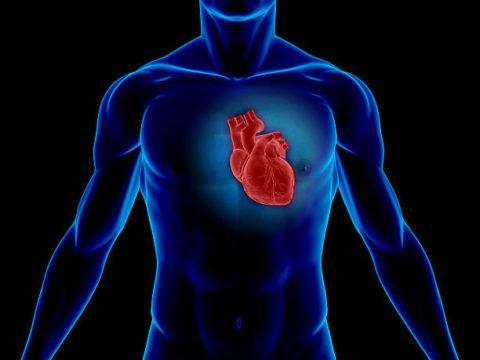 Склероз сердечной мышцы