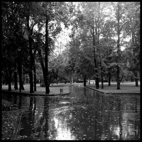 Метеозависимые люди реагируют на резкую смену погодных условий.