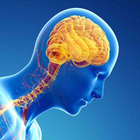 Нейрогенная гипертензия – последствия заболеваний мозга.