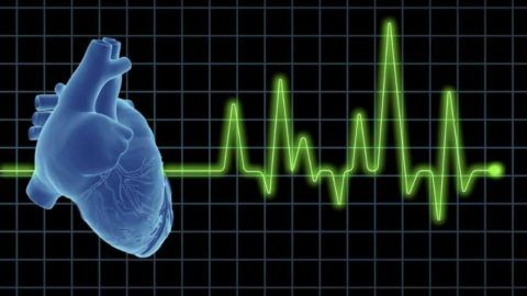 Признаки трепетания предсердий можно обнаружить с помощью кардиограммы