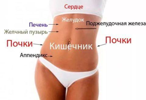 Боль с левой стороны под ребрами может быть спровоцирована патологиями различных внутренних органов, располагающихся в данном участке тела.