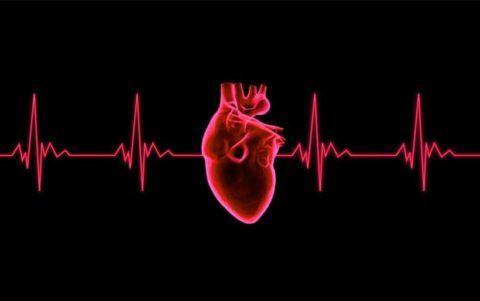 ЭКГ — первая процедура, когда есть подозрения о сердечных сбоях