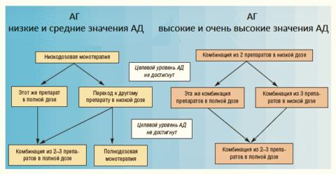 Стартовая терапия АГ (протокол, рекомендованный Российским Обществом кардиологов)