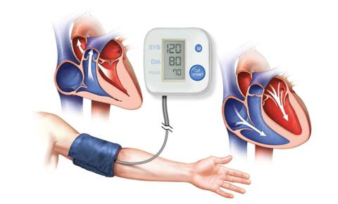 ВС и ФВС – одни из параметров сердечно-сосудистой гемодинамики, влияющие на АД