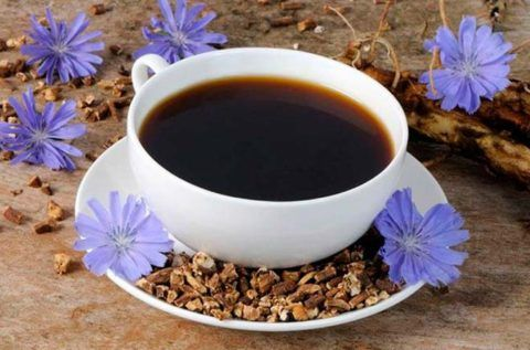 Напиток из корней цикория