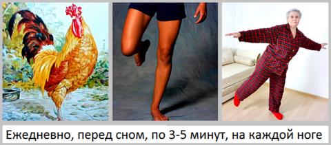 Удержание равновесия – упражнение «Золотой петух, стоящий на одной ноге»