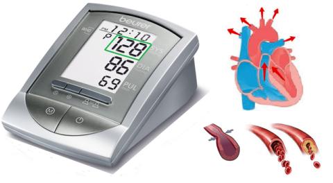 Верхнее АД зависит от частоты и силы сокращений сердца, тонуса артерий, вязкости крови