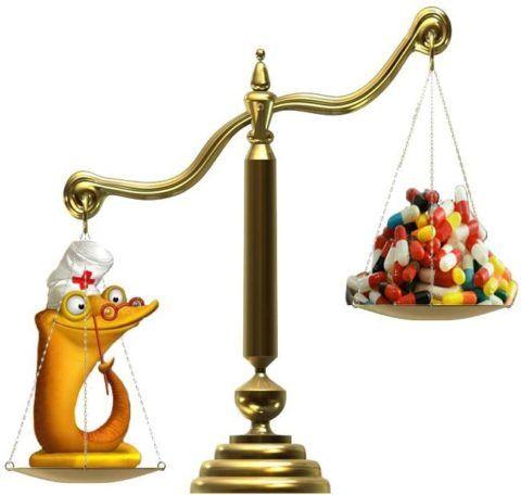 На ранних стадиях гипертонии использование гирудотерапии помогает сократить прием медикаментов