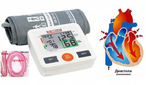Нижнее давление зависит от тонуса стенок мелких артерий и частоты биений сердца