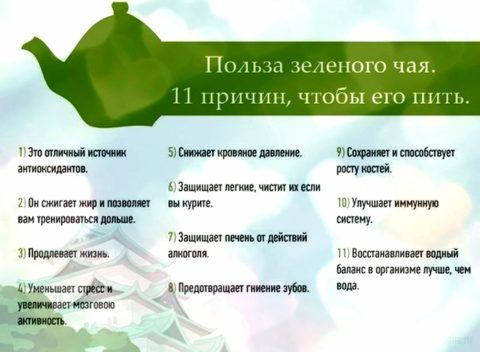 Почему полезен зеленый чай