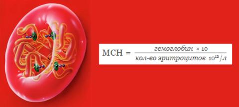 Формула расчета среднего содержания гемоглобина в красном кровяном тельце