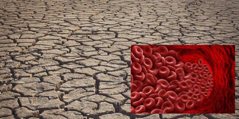 К сгущению крови может привести «банальная» недостаточность потребления питьевой воды
