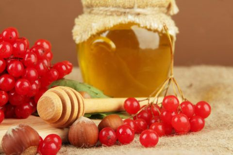 Калина с натуральным пчелиным медом и лесными орехами – одно из лучших сочетаний при борьбе с повышенным давлением