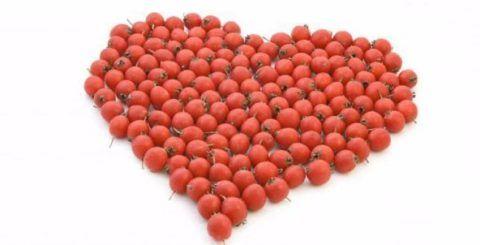 Плоды боярышника очень полезны для сердечно-сосудистой системы
