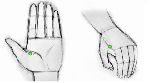 Время непрерывного сжимания – 7-10 секунд, повторить манипуляцию нужно 4-5 раз