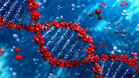 Генетическая предрасположенность – причина тахикардии