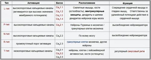 Типы кальциевых канальцев