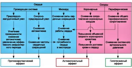 Кардиопротекторные воздействия, получаемые от угнетения проникновения ионов Ca внутрь клеток