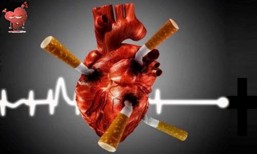 Отказ от курения — и профилактика, и необходимое условие успешности лечения ХСН
