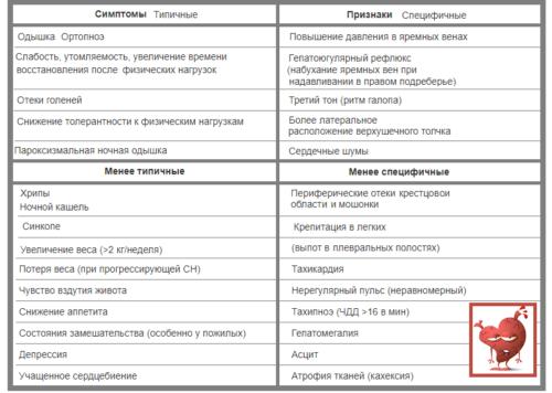 Распространенные и возможные, типичные и специфичные симптомы и признаки ХСН