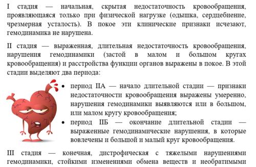 Стадии ХСН, выделенные Н.Д. Стражеско и В.Х. Василенко